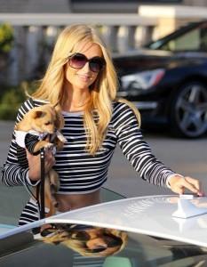 Paris Hilton e il chihuahua Peter Pan