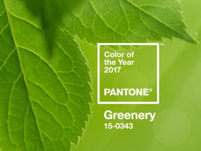 Pantone Color of the Year 2017 - Greenery (codice 15-0343)