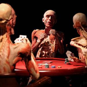 Real Bodies, scopri il corpo umano - Milano