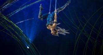 cirque du soleil 2017 roma amaluna biglietti