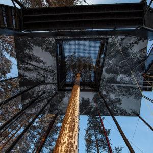 treehouse-hotel-7th-room-snohetta-sweden-4