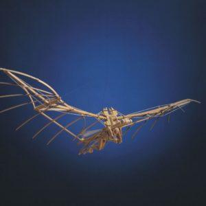 Modello di macchina volante