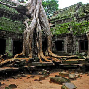 Cambogia - Credit: lecercle