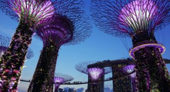 08_singapore_gardens_by_the_bay_unsplash-2