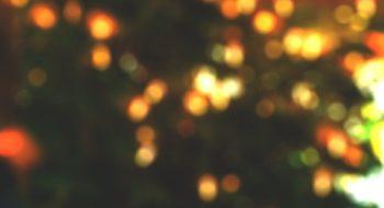 pexels-photo-241820