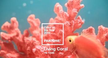color_pantone_2019