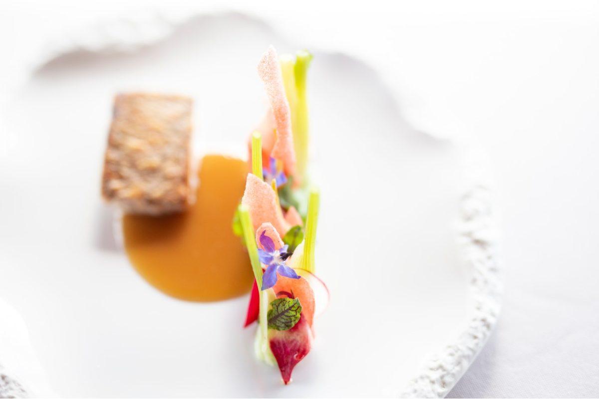 piatti che alessandro rossi gabbiano 3.0 marina di grosseto