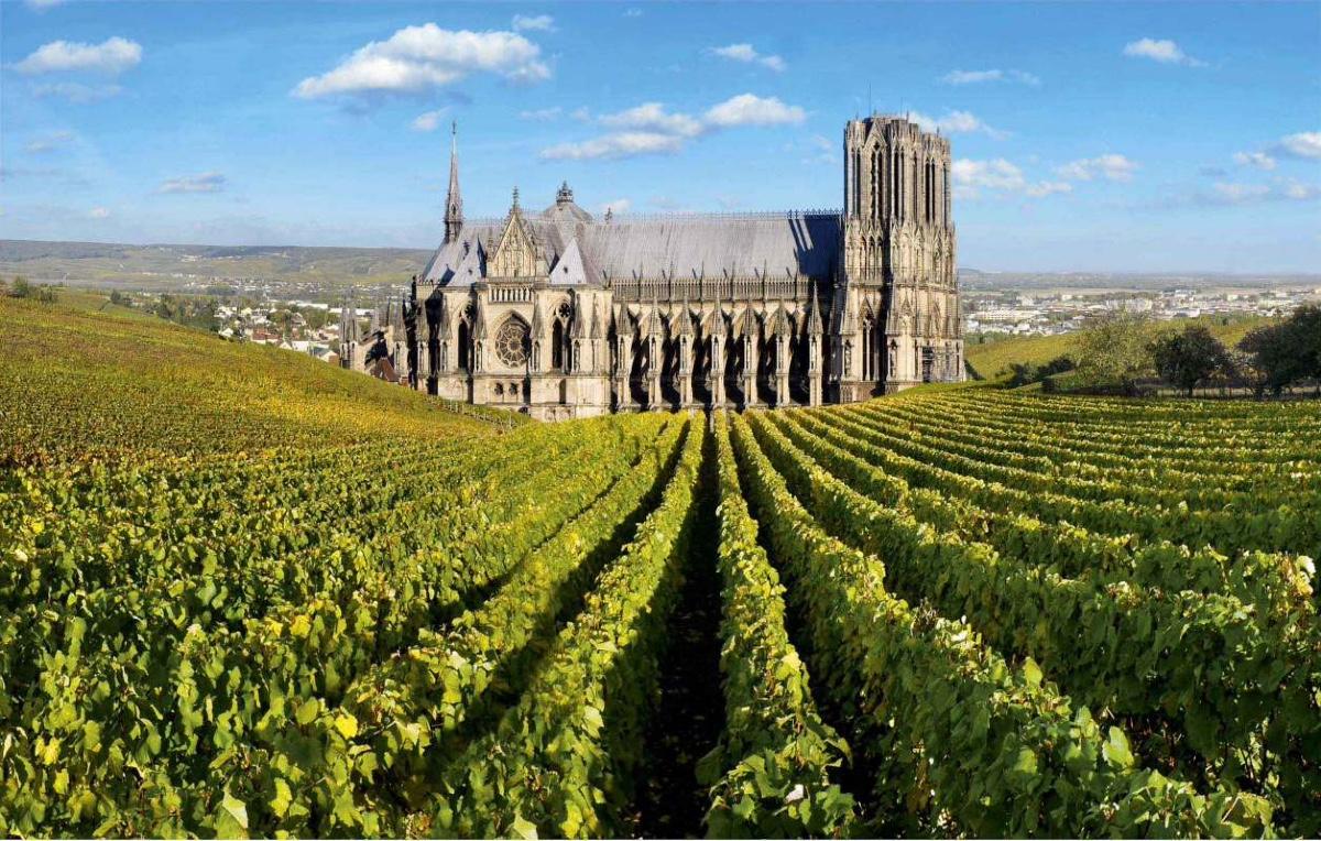 Champagne tour: Dom Perignon